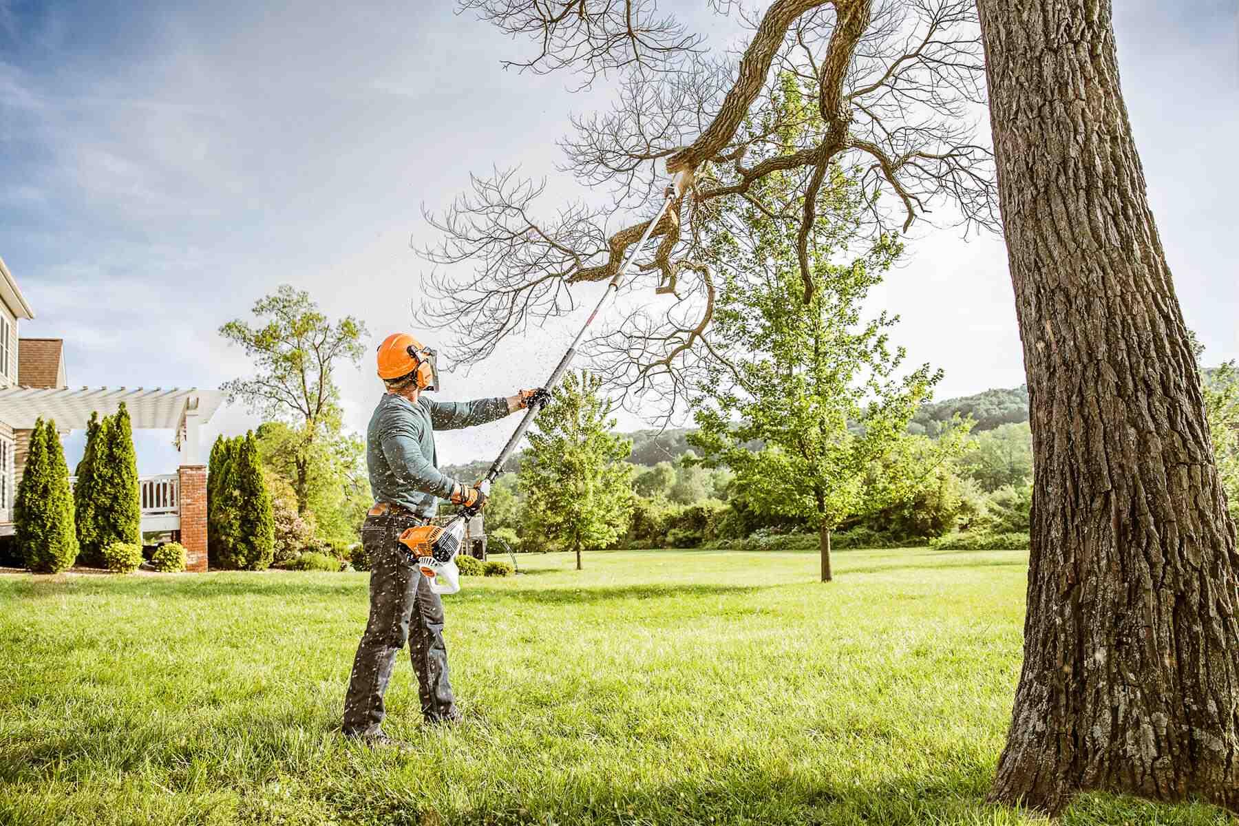 Tree Pruning 1